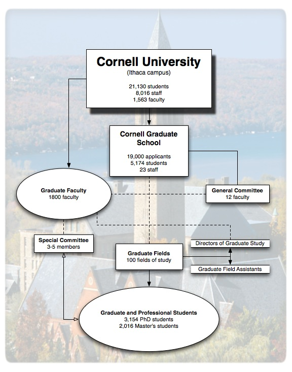 Depiction of the governance and structure of the Cornell Graduate School detailed on this webpage.