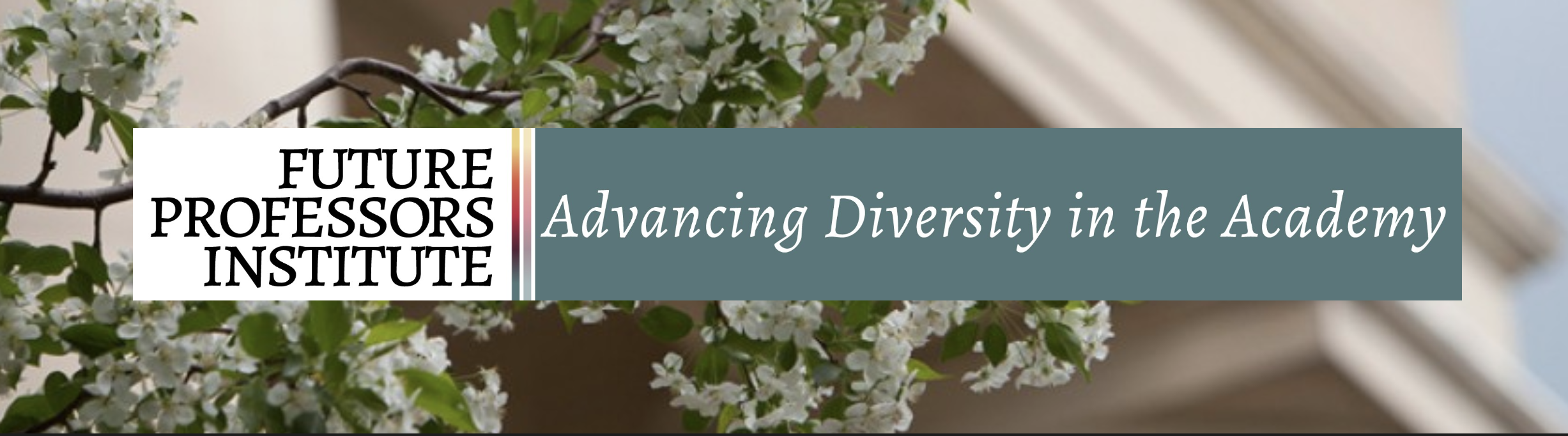 Future Professors Institute: Advancing Diversity in the Academy logo