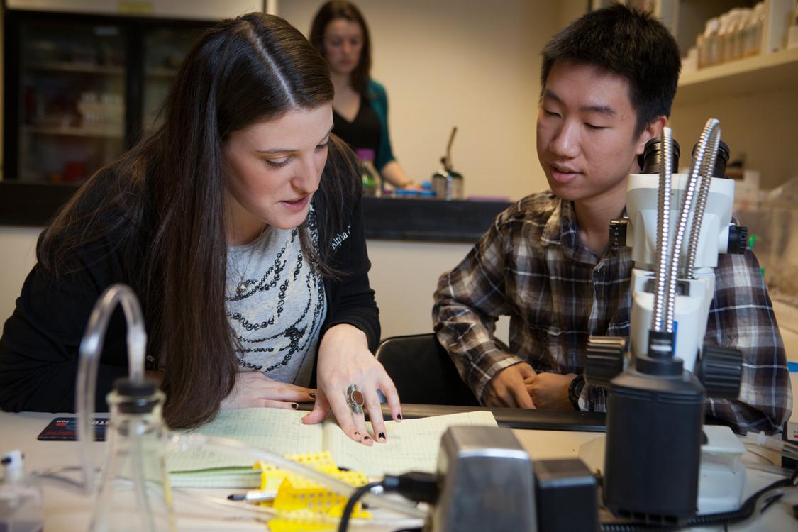 articipants in the Undergraduate Research Board (CURB) Peer Mentoring Program