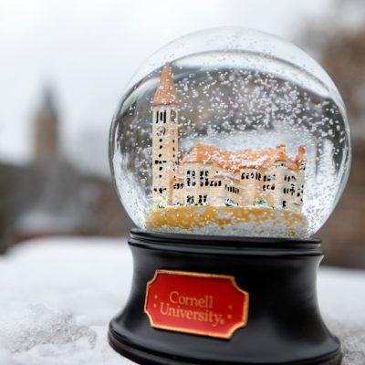 Cornell snow globe