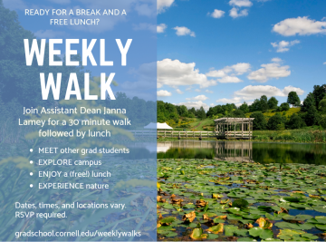 Weekly Walks summer flyer, content also on page