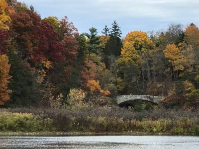 Fall foliage around lake and bridge
