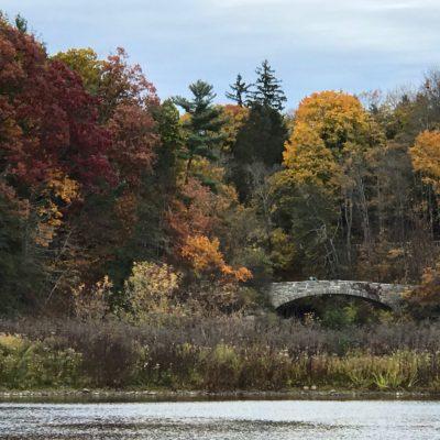 Fall foliage around lake and bridge