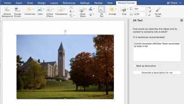 Word document displaying alt text window for inserted image.