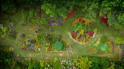 Aerial view of students in campus natural area