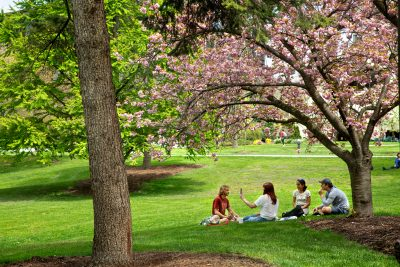 A small group of students sit outside in spring