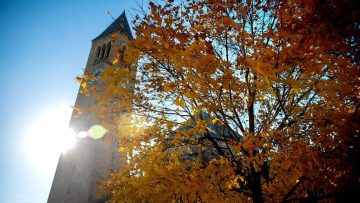 Fall leaves in front of McGraw Tower